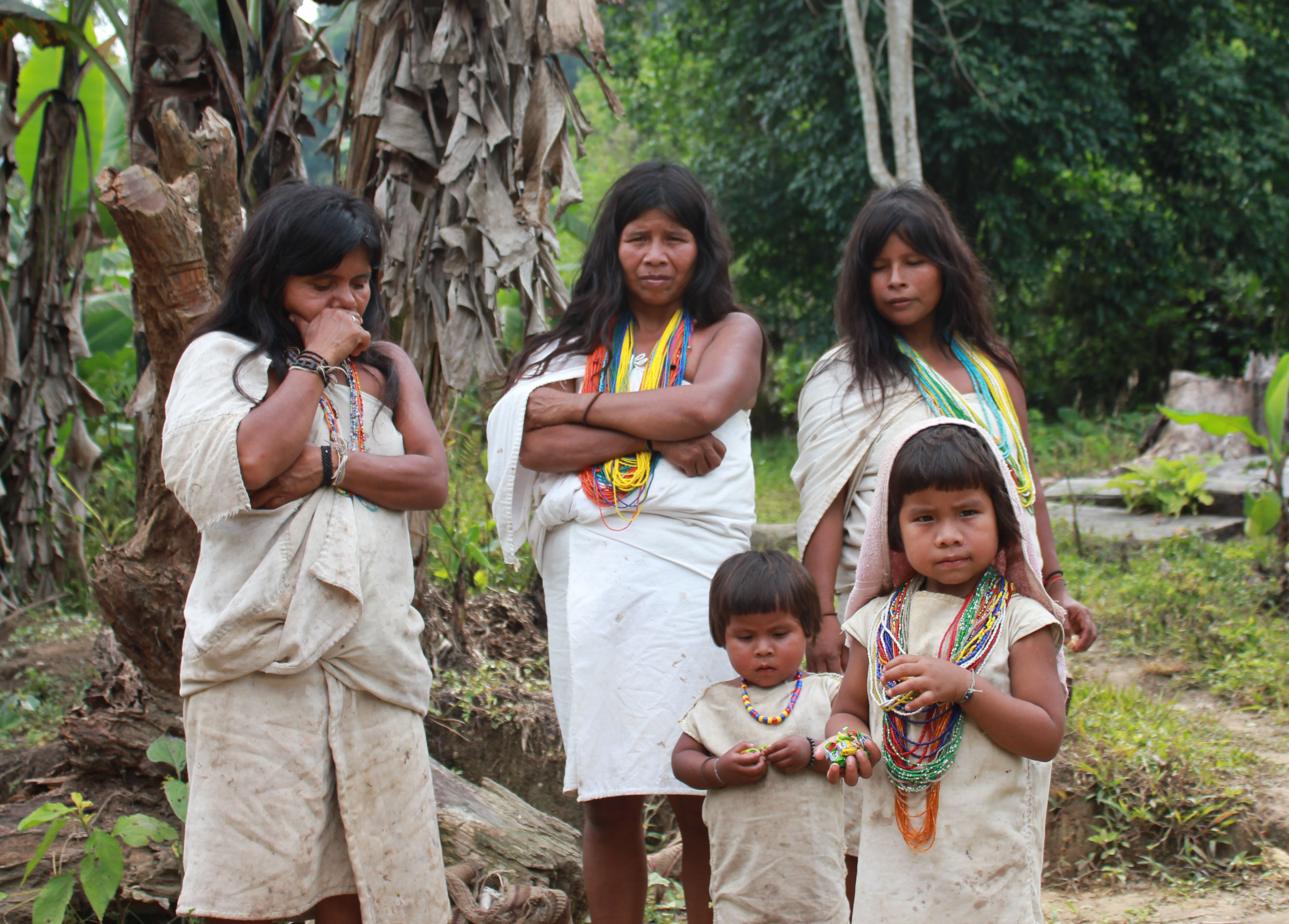 kogi tribe The elder brothers [alan ereira] on amazoncom free shipping on qualifying offers the kogi, members of an isolated tribe in the mountains of colombia, speak out about the consequences of modern living in a keen portrait of a culture that has survived unchanged for more than a thousand years 10.