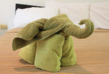Towel Elephant - Towel Art