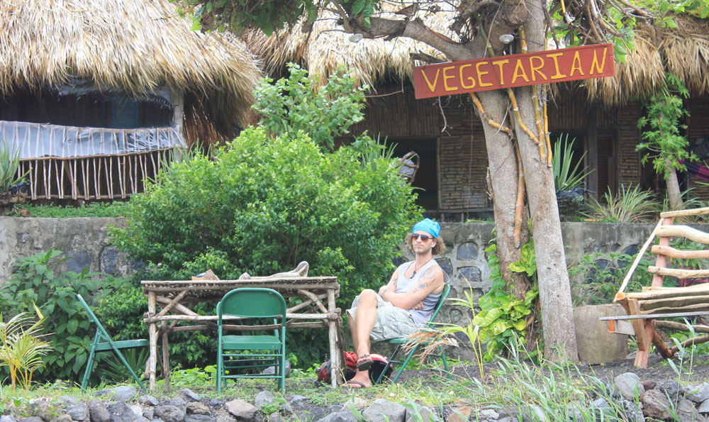 Vegetarian Travel