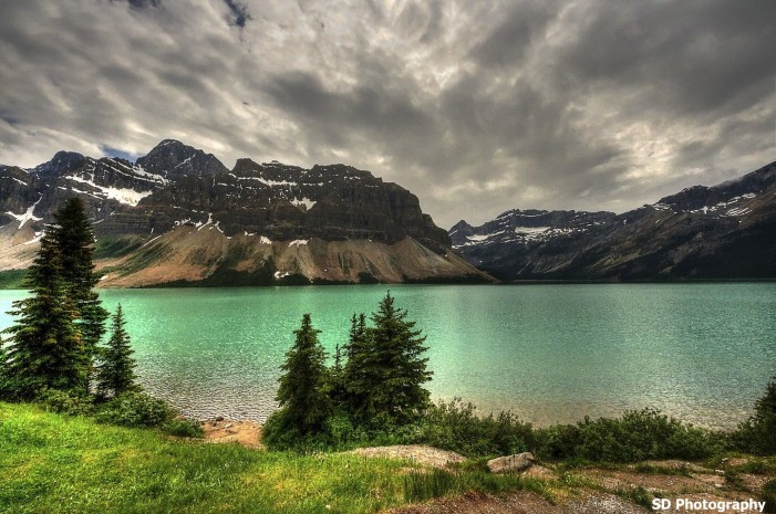 Bow Lake Canadian Rockies