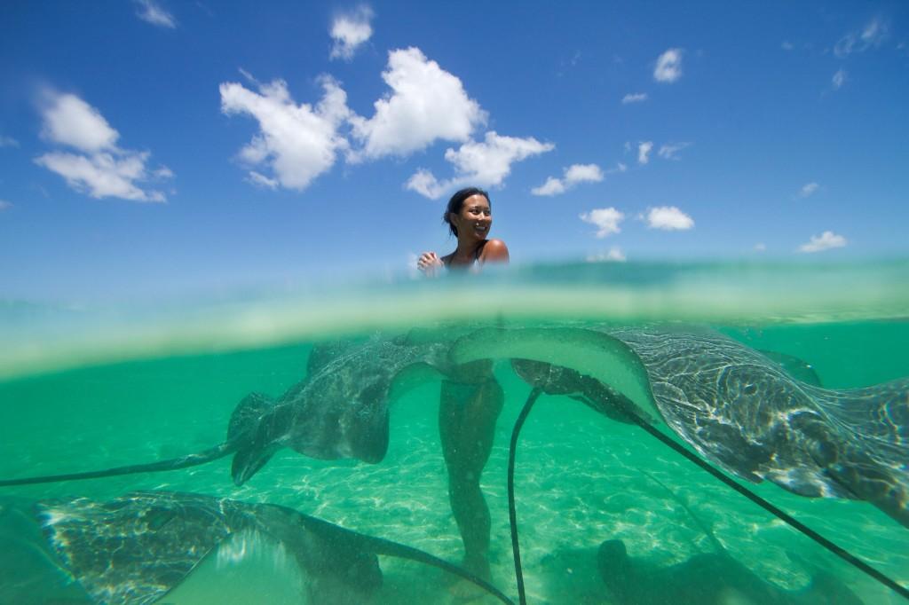 Stingrays in Bora Bora during the Iron Mana Liquid Festival. Photo credit: Wim Lippens