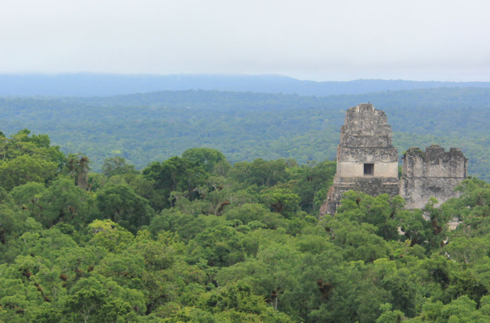 Tikal Ruins - Guatemala