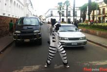 Zebra Crossing Bolivia