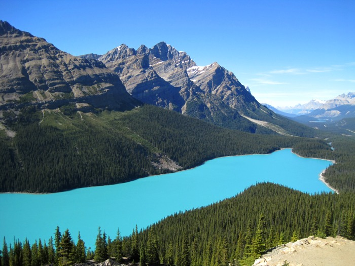 Tour Group Travel: Peyto Lake in Canada