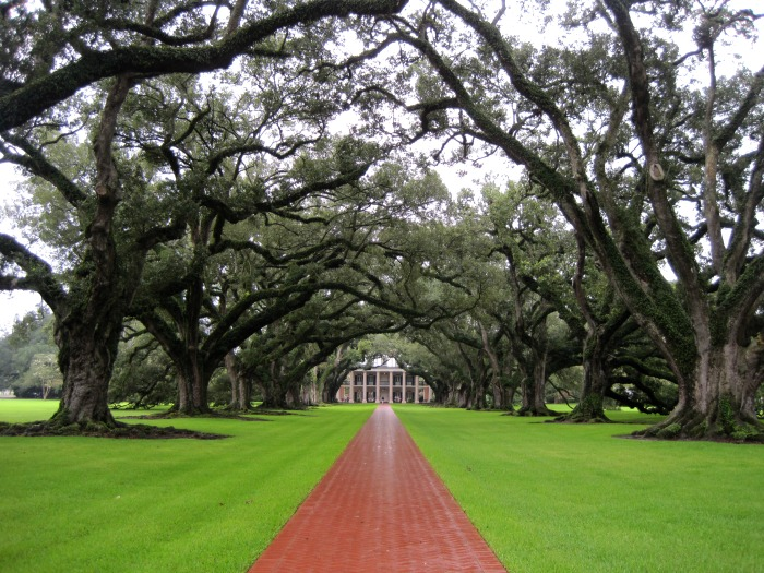 Tour Group Travel: Oak Alley Plantation