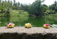 Prayer and offerings to the Gods is an integral part of life in Bali