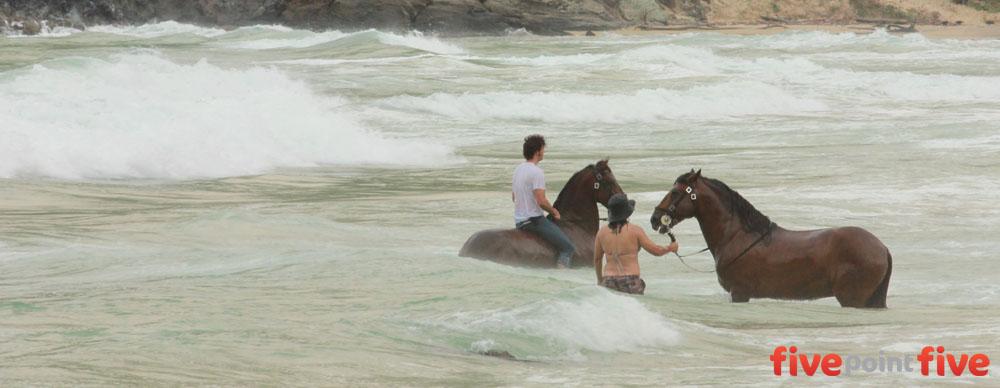 Horses in Puerto Colombia, Venezuela
