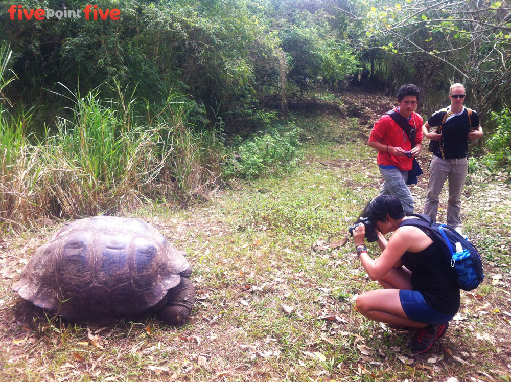 Tracking Giant Tortoises - Galapagos Islands