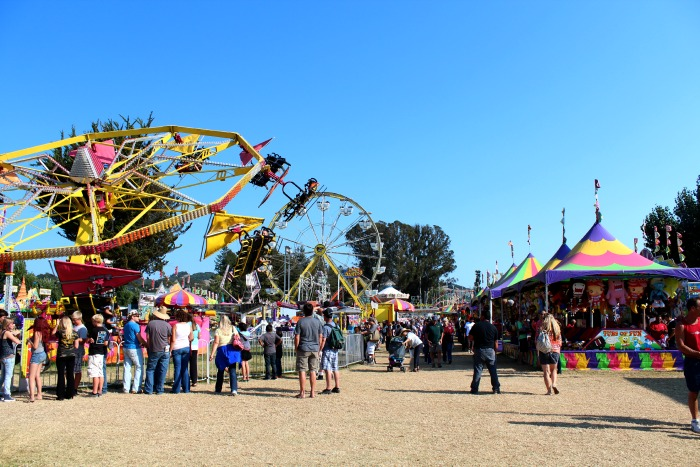 Wine Country: Santa Rosa County Fair