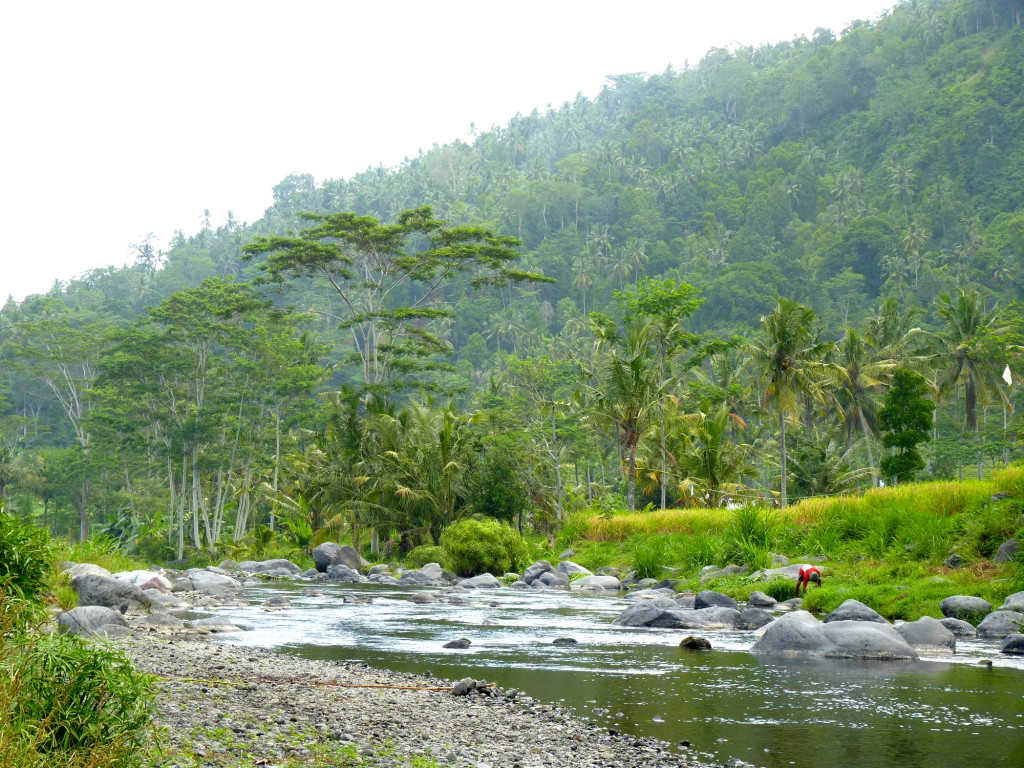 Exploring the river that borders the property